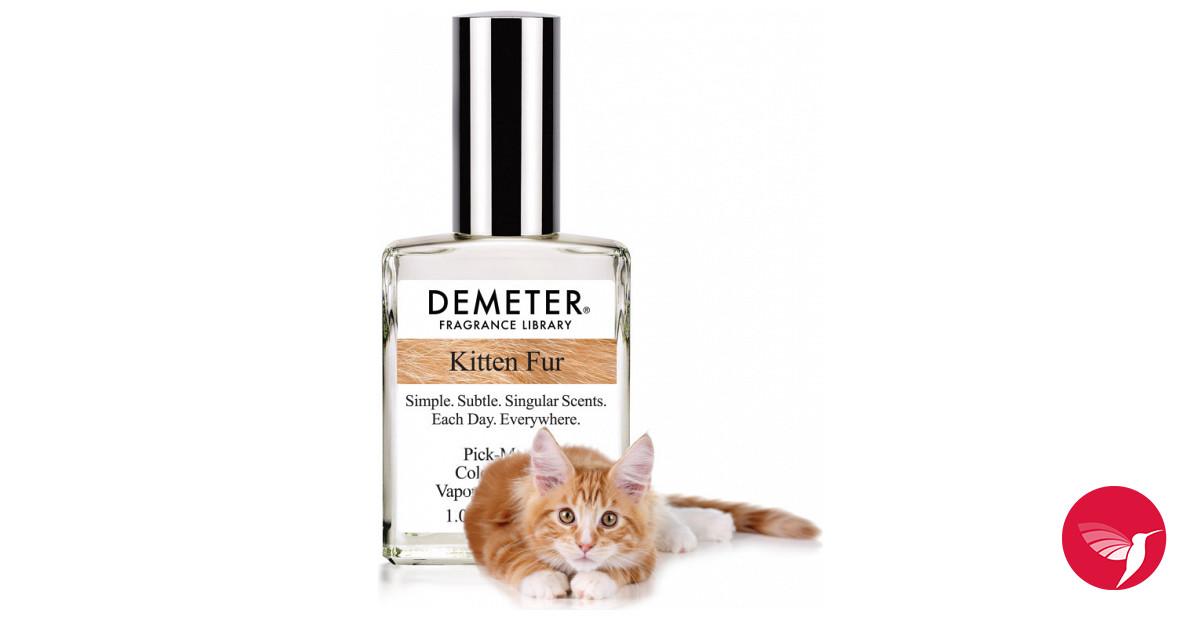 Топ 10 запахов, которые кошки не любят больше всего