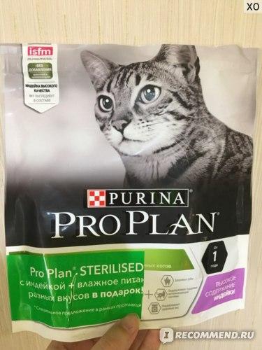 Обзор корма для кошек про план