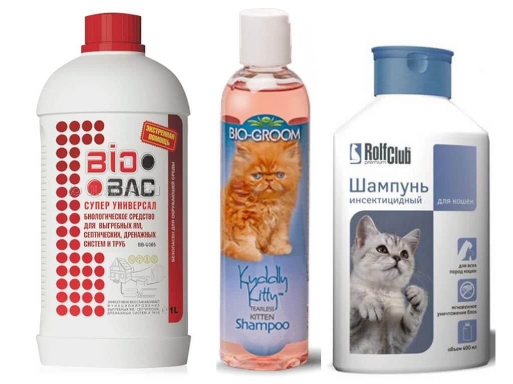 Средства ухода за длинной шерстью кошек: выбираем подходящий шампунь