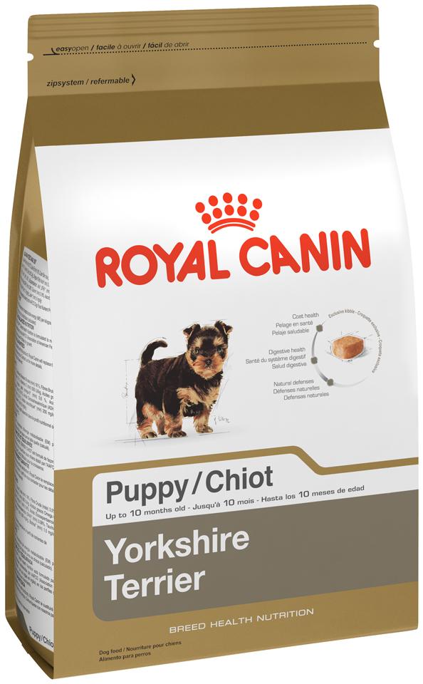 Чем кормить щенка йоркширского терьера