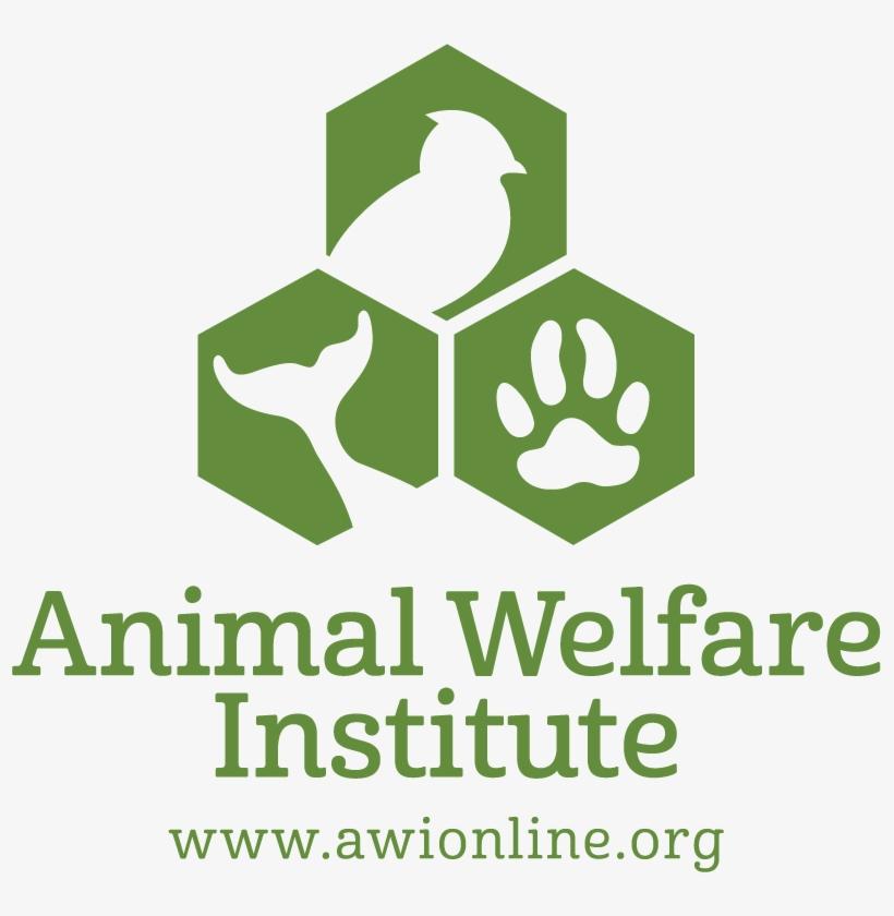 Ceva animal welfare awards 2019