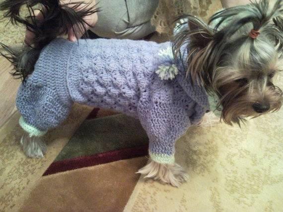 Виды стрижек для йоркширского терьера: фото причесок для мальчиков и девочек + как подстричь собаку самостоятельно