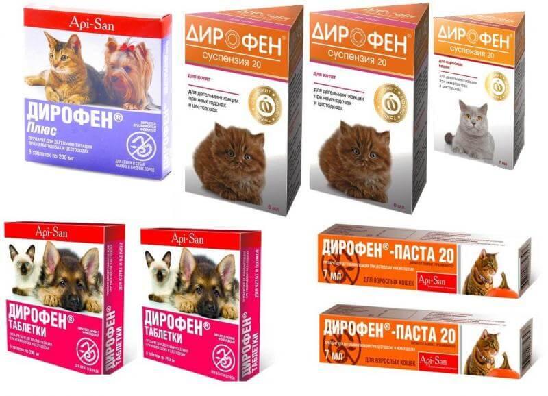 Здоровье:глистогонное ( антигельминтное ) средство  для собак.