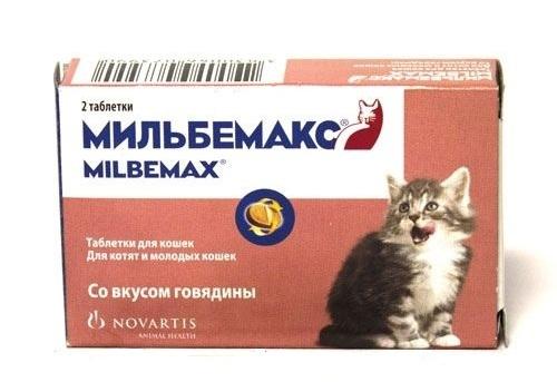 Квантум для собак и кошек, 4 табл. упаковка
