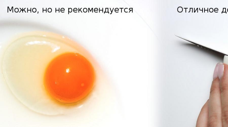 Можно ли собаке давать яйца, в каком виде и как часто