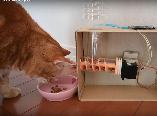 Кормушка для кошек с дозатором своими руками