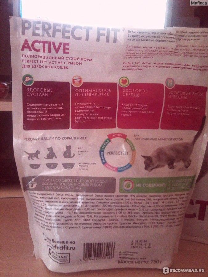 Обзор корма для кошек friskies