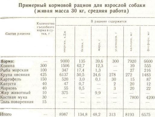 Натуралка для собак. что покупать и как при этом экономить.(wolcha.ru)