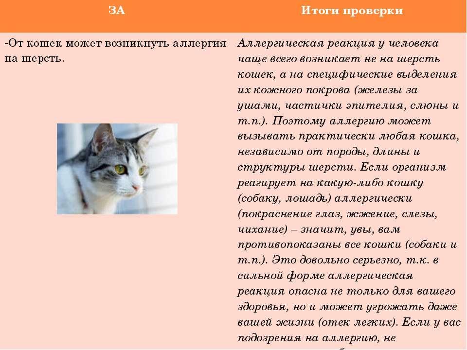 Гипоаллергенные корма для кошек: 15 влажных и сухих продуктов с описанием