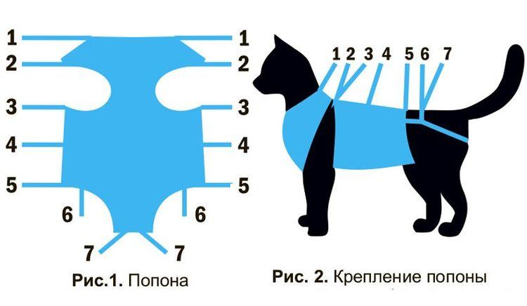 Попона для кошки после стерилизации