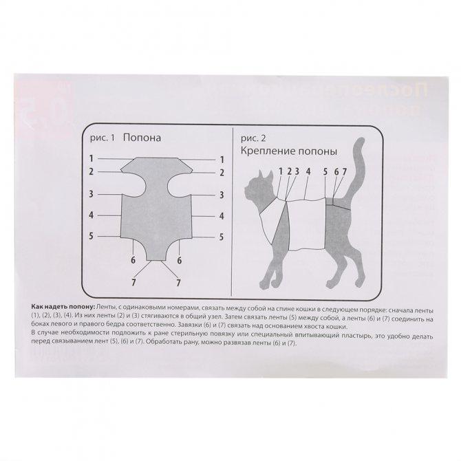 Выкройка одежды для кошек и котов своими руками, выкройки подробно, из чего шить, пошаговая инструкция изготовления