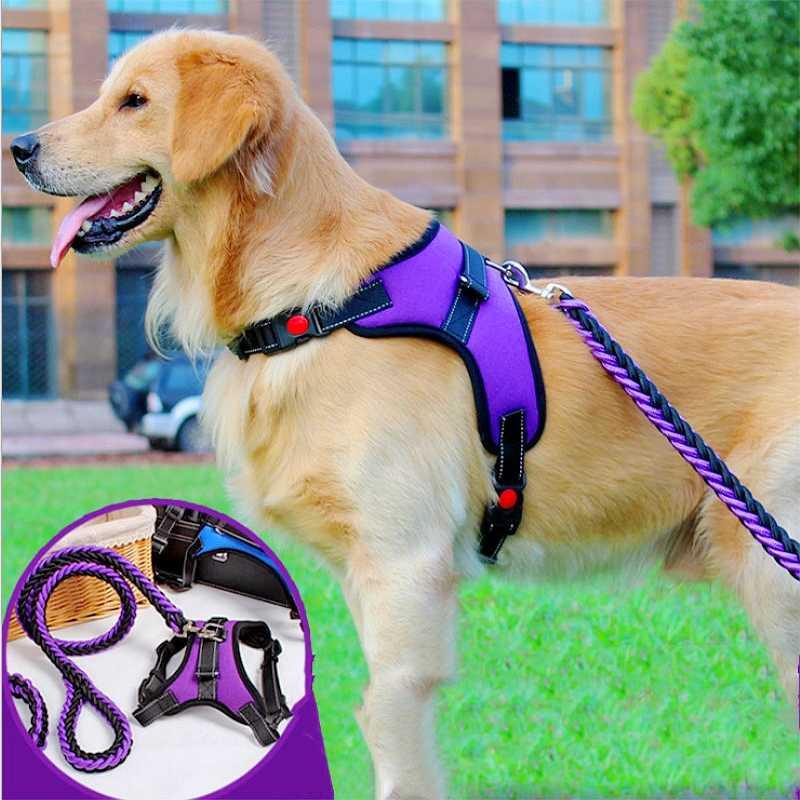 Как одеть шлейку на собаку: типы шлеек и их использование