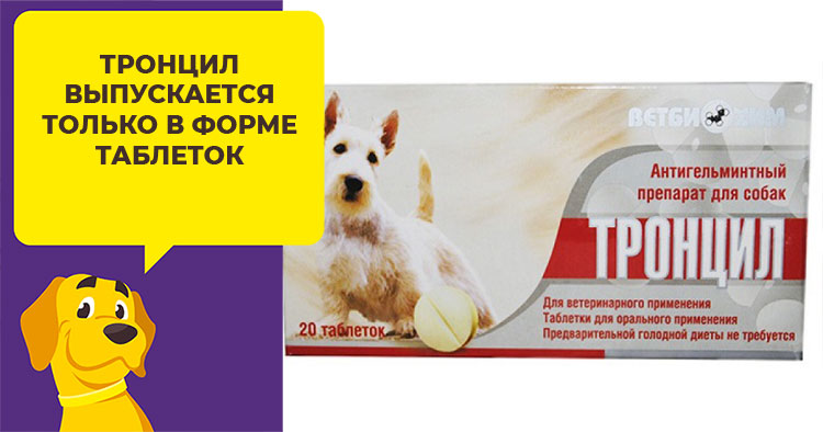 Тронцил-к для кошек: способ применения, инструкция по использованию, показания и противопоказания, аналоги, отзывы