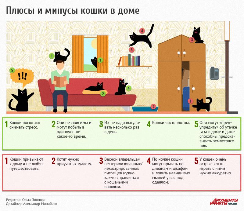 Почему кошки любят спать с хозяевами?