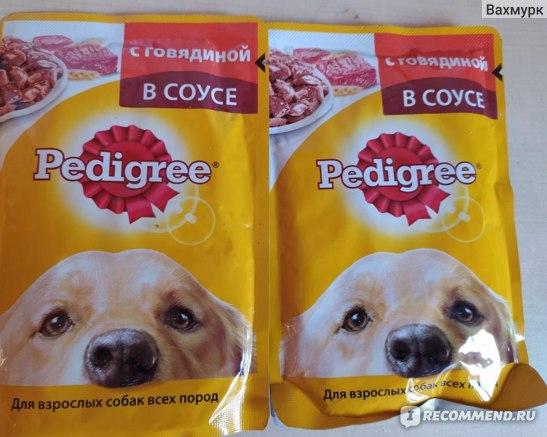 Корм для собак «all dogs» — отзывы и полный разбор линейки