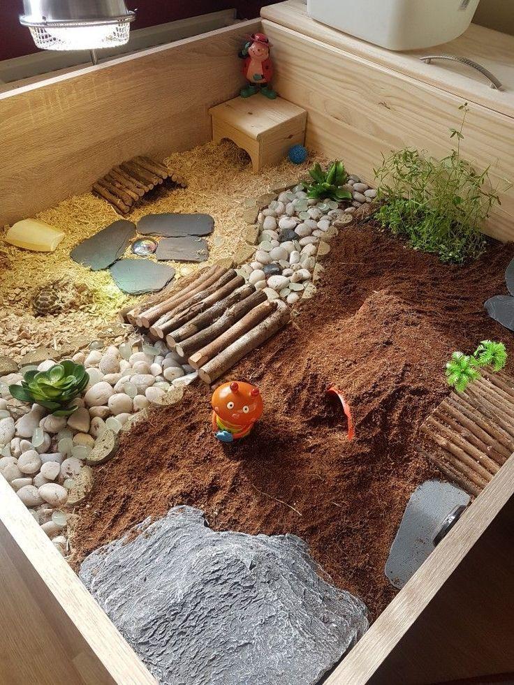 Островок для красноухой черепахи своими руками – строим берег в акватеррариуме