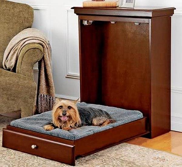 Как выгнать собаку с дивана