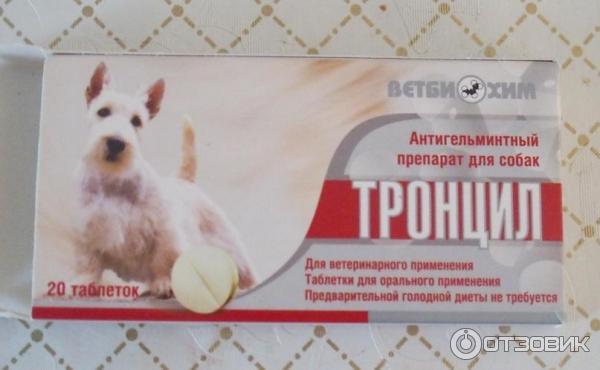 Лекарства для кошек от глистов: названия и виды препаратов