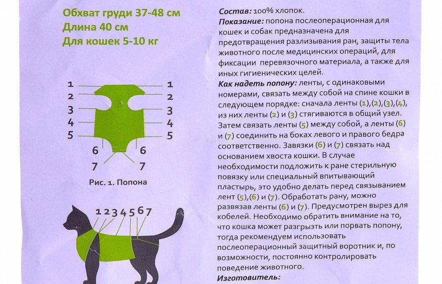 Сколько носить попону после стерилизации кошки, через сколько дней снимать