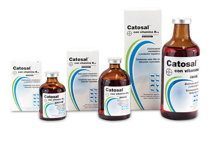 Катозал для кошек: инструкция по применению и отзывы о лекарственном препарате