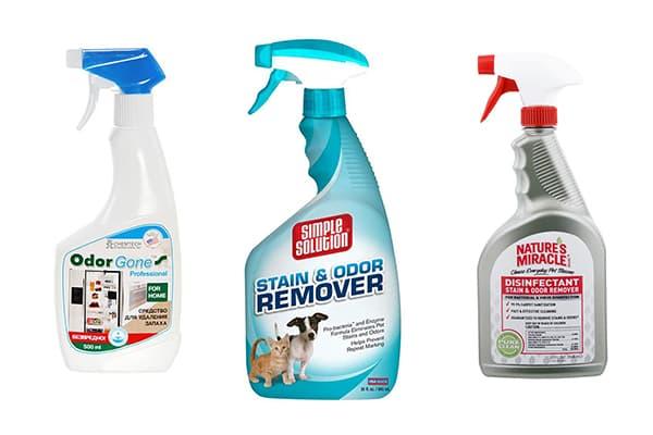 Чем вывести запах собачьей мочи с ковра - домашние методы  | русский клининг