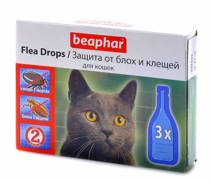 Топ- 10 лучших капель от блох и клещей для кошек и собак, как подобрать?