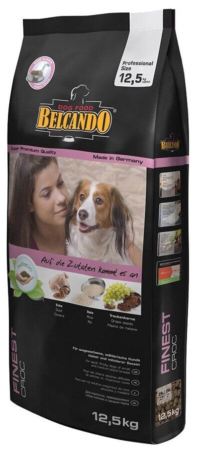 Корм для собак белькандо: отзывы и обзор состава