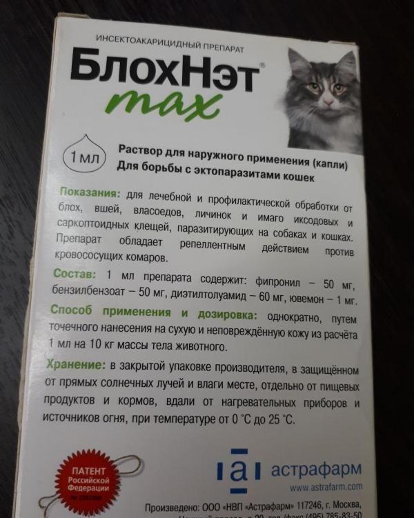 11 лучших капель от блох для кошек