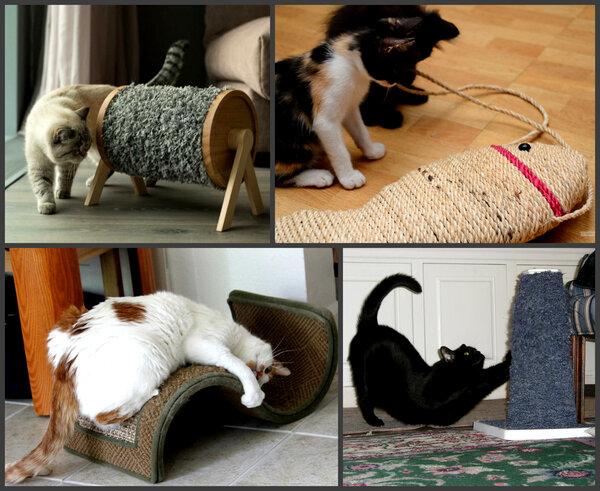 Как отучить кота драть диван: лучший работающий способ