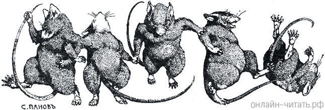 Круче любой мышеловки — какая кошка лучше всего ловит мышей?