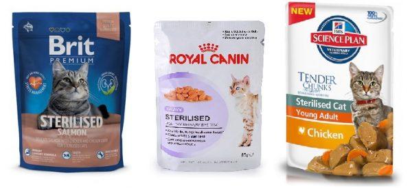 Обзор лучших кормов для пожилых кошек на 2021 год с преимуществами