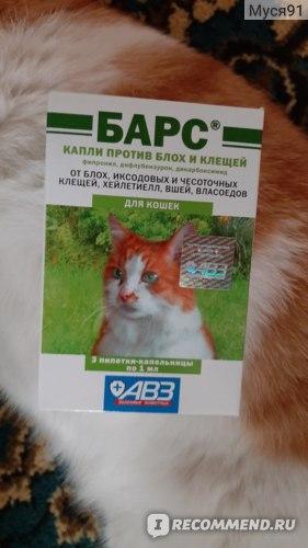 Инструкция по применению капель от блох и клещей «барс», правила обработки собак и кошек | вгкб № 2