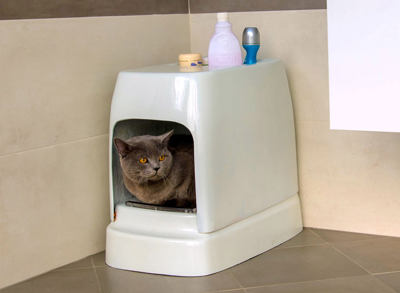 Туалет для кошек: как выбрать лучший