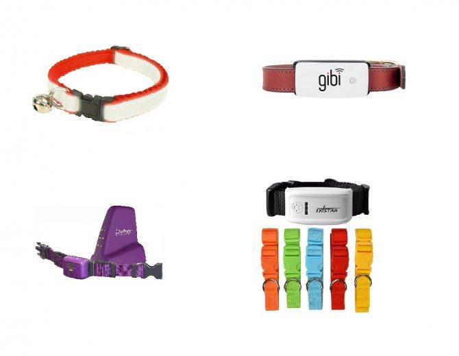 Как выбрать gps-трекер для собаки - лучшие модели gps ошейников