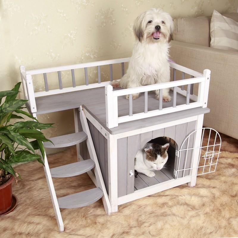 Маленькие породы собак для квартиры: обзор и секреты содержания собак