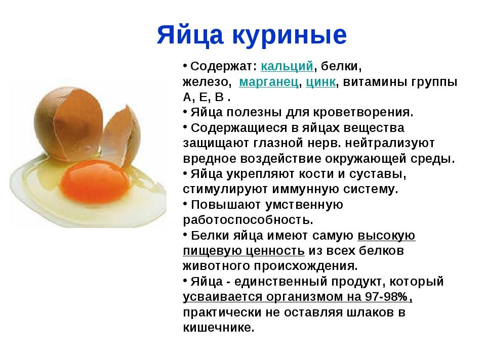 Рацион маленького питомца. можно ли щенку давать яйцо?