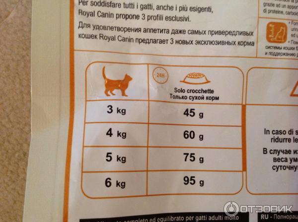 Рвота у кошки - виды, причины, симптомы, помощь, лечение и профилактика рвоты у кошки