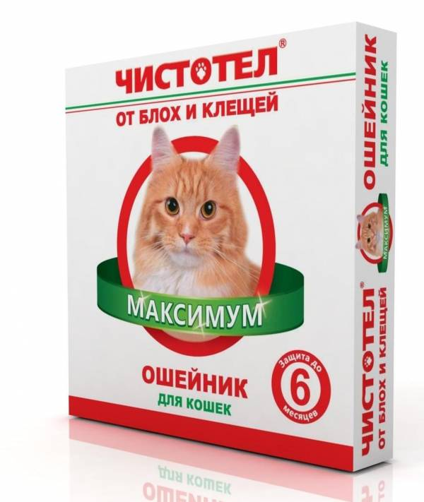 Ошейники от блох и клещей для кошек: самый полный обзор