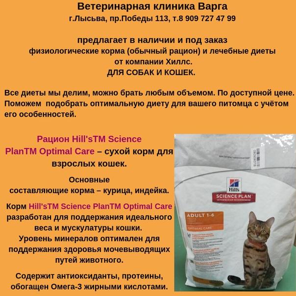 Феликс – корм для кошек: состав, полезные свойства, мнение ветеринаров