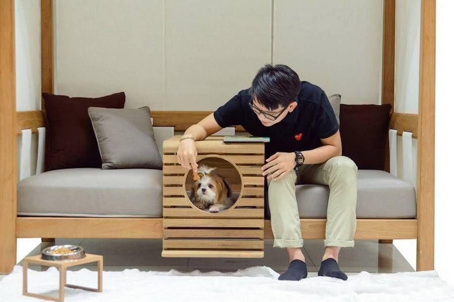 Инструкция по приучению щенков и взрослых собак оставаться одним в квартире