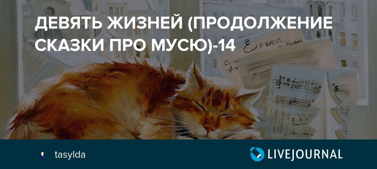 Какие вирусы может подхватить ваш питомец, и как не допустить проявление инфекционных болезней у кошек