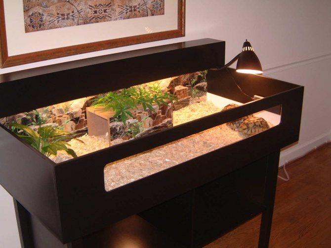 Как сделать акватеррариумы для красноухих черепах своими руками