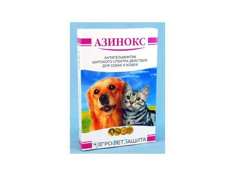 Как вывести глистов кошке препаратом азинокс: инструкция
