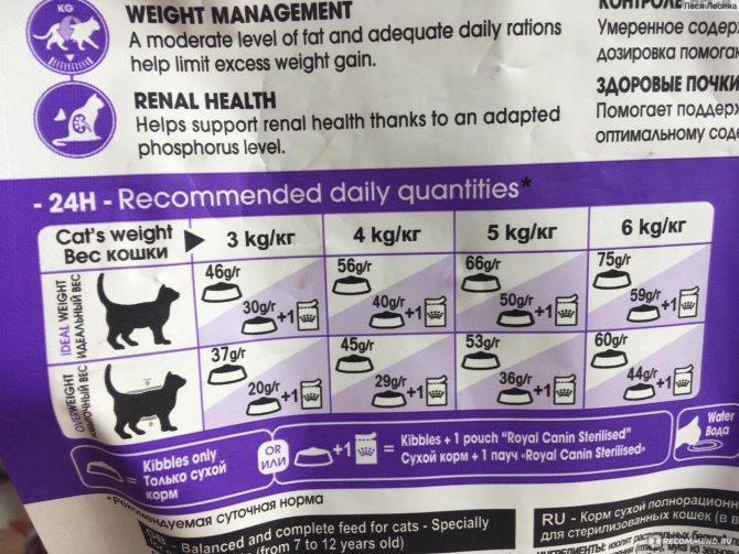 Сколько корма должна съедать кошка в день????