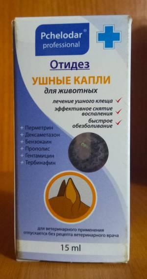 Ушной клещ (отодектоз) у кошек: симптомы, диагностика, лечение и профилактика (фото)
