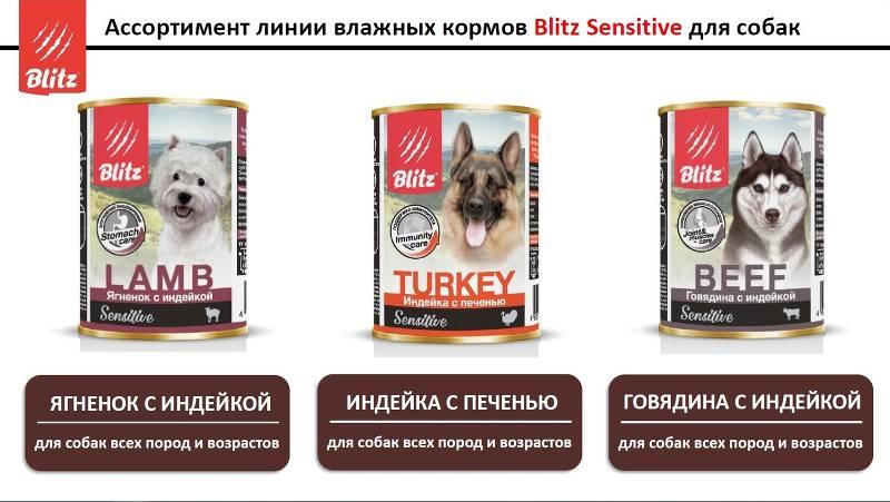 Корм для кошек blitz: отзывы, разбор состава, цена - петобзор
