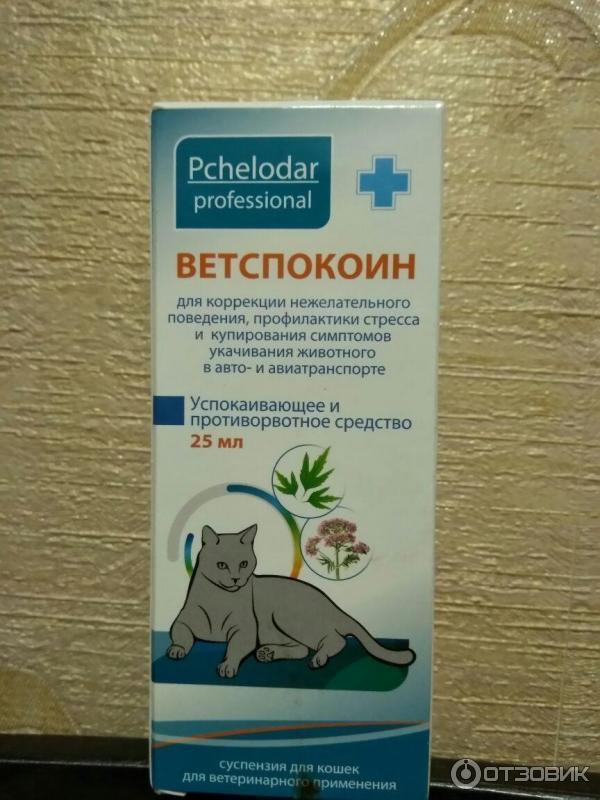 Успокоительное средство для кошек — обзор препаратов, отзывы