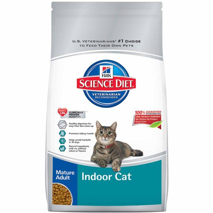 Корма эконом класса для кошек: список, рейтинг, отзывы - петобзор