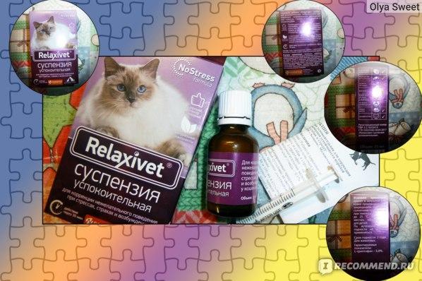Успокоительные средства для взрослых: обзор популярных препаратов