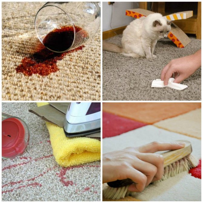 Как избавиться от запаха собачьей мочи в доме?